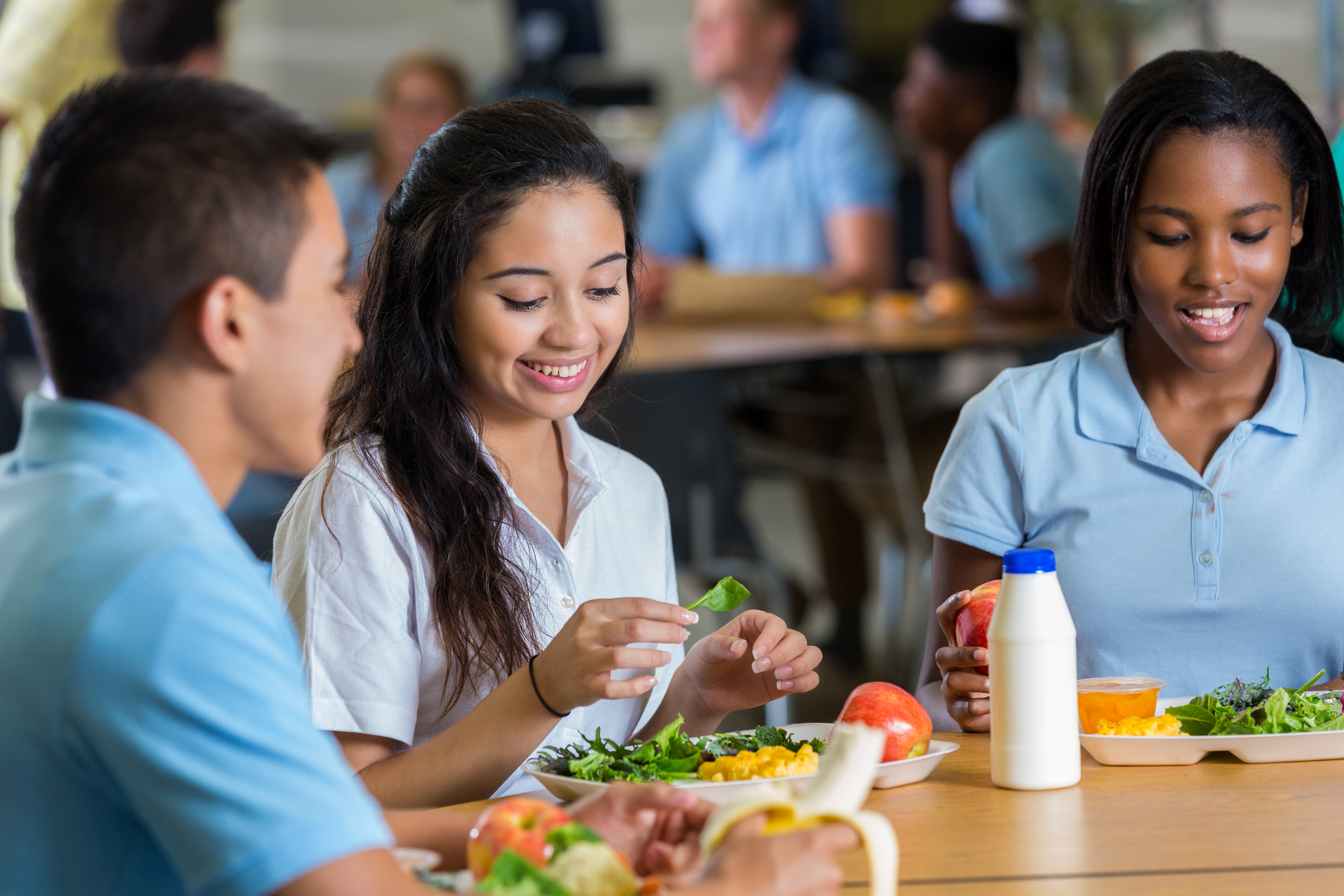 Standards For Food Safety In Schools Neu