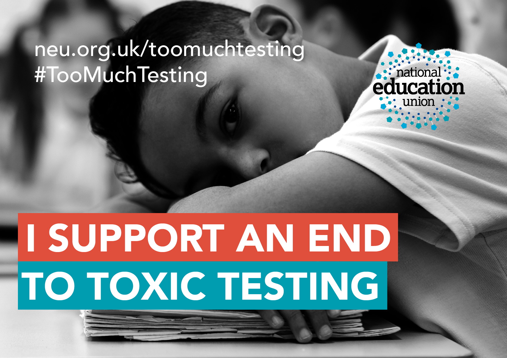 I support an end to toxic testing - card