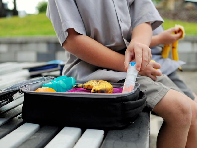 Boy with epipen in his packed lunch